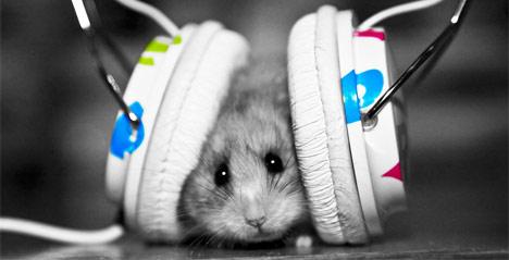 Skinite muziku sa interneta